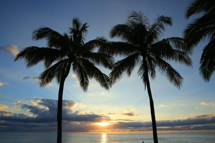 ハワイのサンセット写真 ヤシの木ビーチ