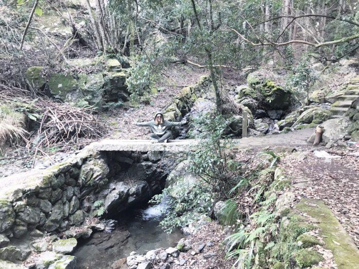 愛宕山ハイキング